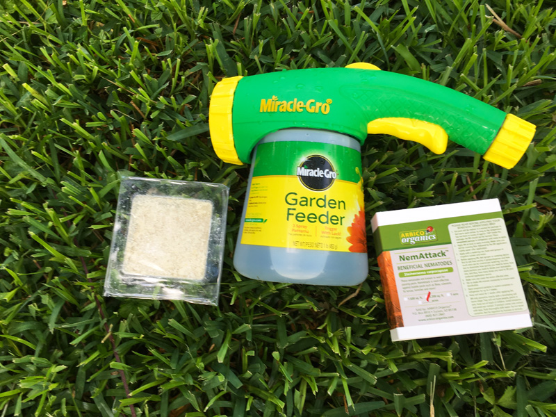 Beneficial nematodes for pest control; photo by Kelly Smith