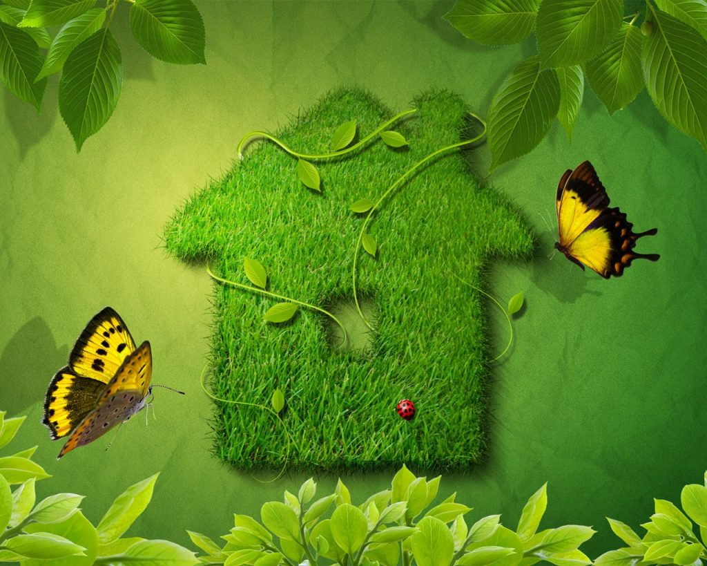 Have a green home and lifestyle