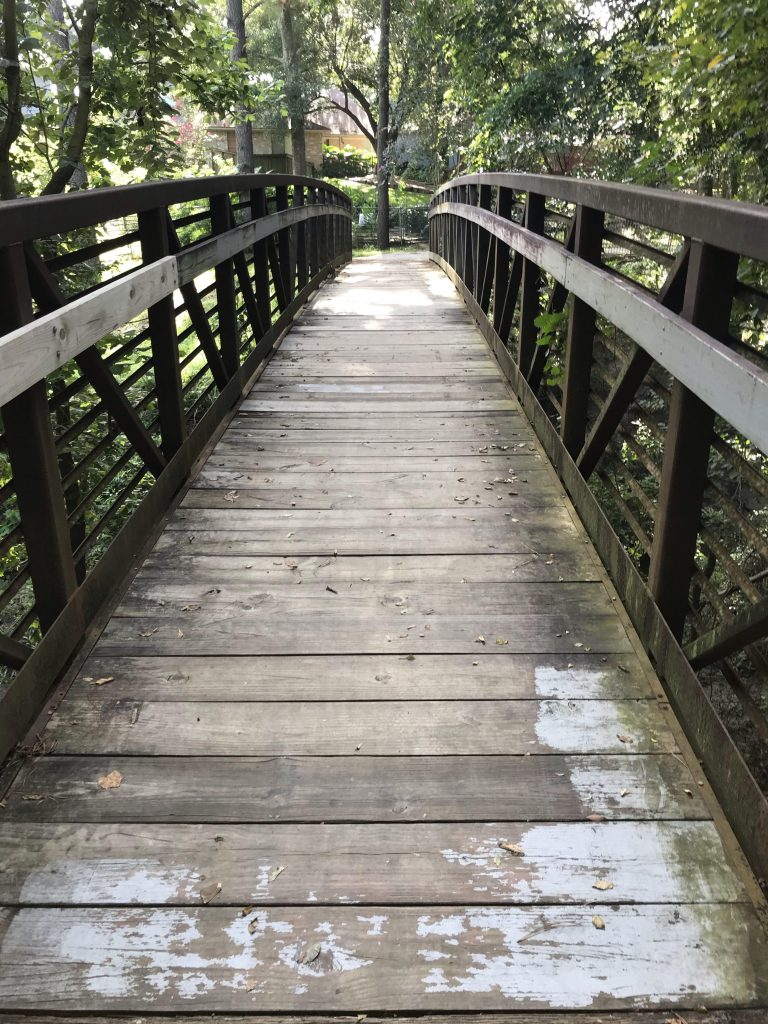 A wooden bridge, about 1 mile into the hike.