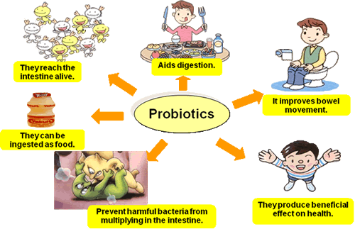 The health benefits of probiotics
