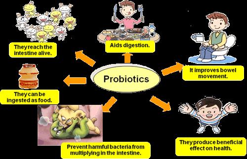 The health benefits of probiotics