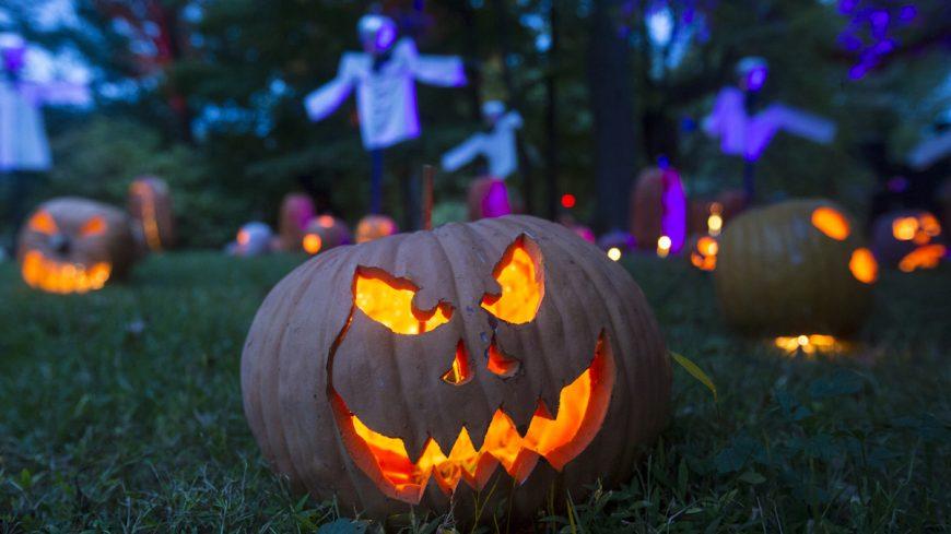 Spooky Halloween Jack o' Lanterns