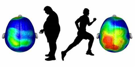 Running and brain functionality