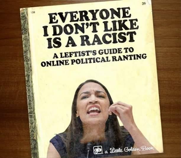 Democratic Socialist playbook