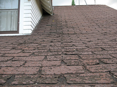 An asphalt shingle roof in disrepair; photo couttesy Dale Mahalko