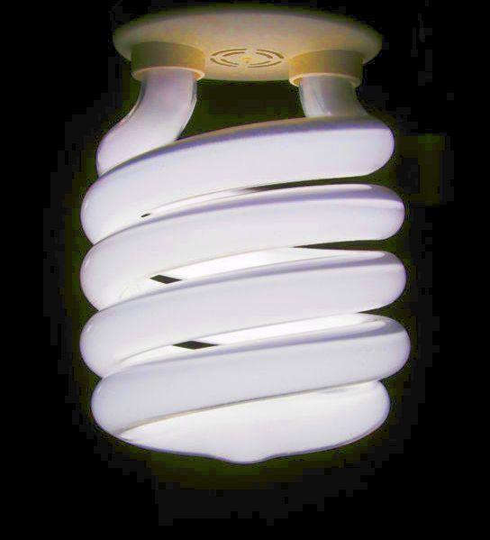 A Compact Flourescent Bulb
