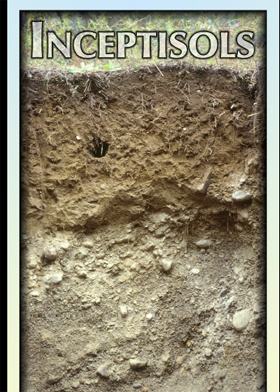 Soil layers; Photo courtesy US gov