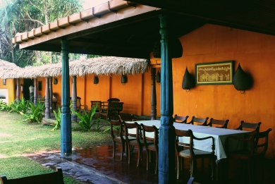 An Outdoor Southwestern Dining Experience