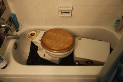 A toilet resting in the tub; photo courtesy Kelly Smith